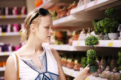Attractive woman choosing potted plants Royalty Free Stock Photography