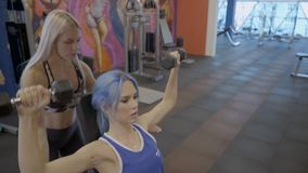 Attractive woman doing seated dumbbell press with trainer in gym. She sits, holds free weight and with exhalation raises hands up then returns to starting stock video