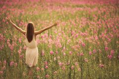 Attractive woman in dress at flower field. Young attractive woman in dress at flower field Stock Photo