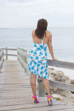 Attractive woman in dress and high heels at ocean Stock Photos