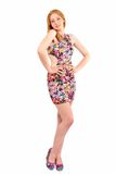 Attractive woman in dress posing Stock Images
