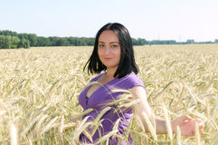 An attractive woman in a field of wheat. Royalty Free Stock Photography