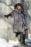 The attractive woman in a fur coat from the silver fox is photog Royalty Free Stock Image