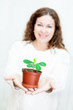 Attractive woman gifting green plant Stock Image