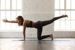 Woman practicing yoga, standing in Bird dog pose, Donkey Kick. Attractive woman in grey sportswear, bra and leggings practicing yoga, standing in Bird dog pose royalty free stock images