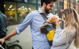 Happy young couple spending time together with dog and bicycles. Attractive women and handsome men spending time together with dog and bicycles royalty free stock photo