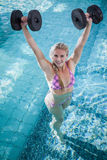 Attractive woman lifting dumbbells Royalty Free Stock Images