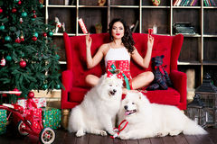 Attractive woman nearly christmas tree Stock Images