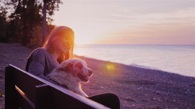 Attractive woman plays with her dog. Sitting on a bench in the park against the backdrop of a beautiful sunset over the stock footage