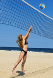 Attractive woman plays in volleyball Stock Photo