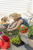 Attractive woman potting up nursery seedlings Royalty Free Stock Image