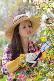 Attractive woman pruning plants Royalty Free Stock Photos