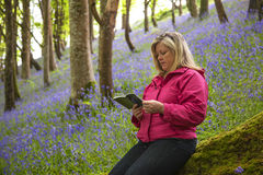Attractive Woman Reading Alone in Quiet Woods / Park. Royalty Free Stock Image