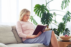 Attractive woman reading book while seating on sofa royalty free stock image