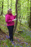 Attractive Woman Reading Field Guide in Quiet Woods or Park. Stock Photo