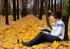 The attractive woman reads the book Royalty Free Stock Image