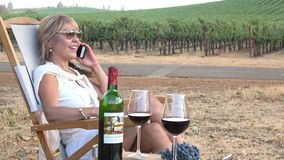 Picnic in the Vineyard. Attractive Woman Relaxing in a Chair and Talking on the Phone stock footage