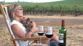 Picnic in the Vineyard. Attractive Woman Relaxing with her cute yorkie lap dog stock video footage