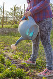 Attractive woman standing watering seedlings Stock Images