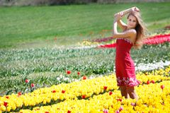 Attractive woman in tulip field royalty free stock image