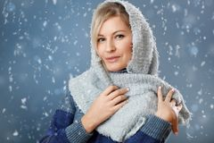 Attractive woman on the winter background. Attractive blond woman on the winter background Royalty Free Stock Photography