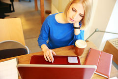 Attractive woman working on the laptop Stock Photo