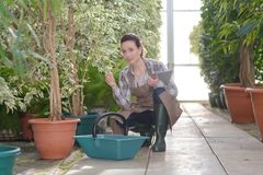 Attractive woman working at plants nursery. Attractive woman working at the plants nursery Stock Photos