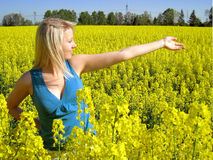 Attractive woman in yellow. Photo of attractive woman in yellow flowers Stock Image