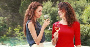 Attractive women having a drink outdoor. Nearby pool stock video footage