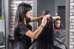 Attractive woman with long wet hair waiting for haircut while pr. Attractive women with long wet hair waiting for haircut while professional hairdresser combing Royalty Free Stock Image