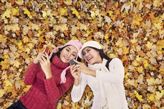 Attractive women over autumn foliage Royalty Free Stock Image