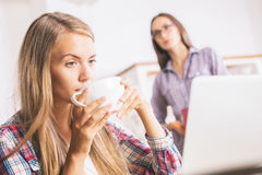 Attractive women using laptop together Royalty Free Stock Photos