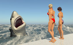Attractive Women Watching A Great White Shark Stock Photo