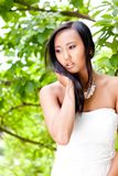 Attractive young asian woman beauty portrait Royalty Free Stock Images
