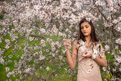 Attractive young beautiful lady, enjoying spring plum blossom flowers stock photo