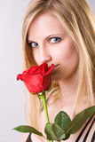 Attractive young blond with fresh rose. Stock Images