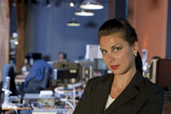 Attractive Young Businesswoman Smiling Royalty Free Stock Image