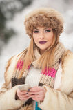 Attractive young Caucasian adult with brown fur cap. Beautiful blonde girl with gorgeous lips and eyes wearing fur hat, outdoor Stock Images