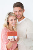 Attractive young couple holding mini house Royalty Free Stock Photography