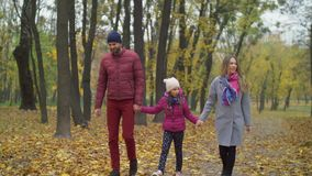 Attractive family walking along autumn path. Attractive young family and lovely elementary age daughter spending leisure in fresh air and enjoying beautiful stock video footage