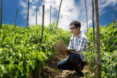 Attractive young farmers with a laptop sitting in a garde. Stock Photos