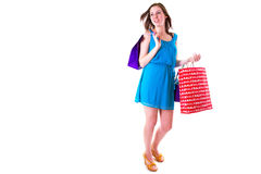 Attractive young female holding shopping bags Stock Images