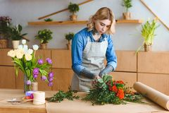 Attractive young florist arranging flowers in flower. Shop royalty free stock images