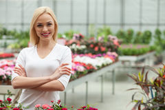 Attractive young gardener is working in greenhouse. Beautiful female florist is caring of the flowers in plant nursery. She is standing and looking at camera Stock Photography