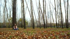 Attractive young girl in autumn Park under a tree, sitting on the ground, working in a laptop. stock video footage