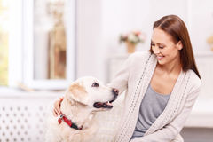 Attractive young girl is playing with her dog Royalty Free Stock Image