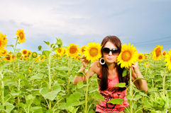 Attractive young girl in  sunflower field Stock Photos