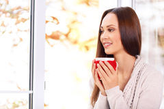 Attractive young lady holding a cup Royalty Free Stock Images