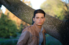Attractive young male model in fall (autumn). Handsome young guy in fall (autumn) outdoors in nature, at dusk Stock Photos