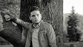 Attractive young male model leaning on tree Stock Images